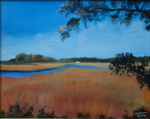 Salt Marsh on Shem Creek